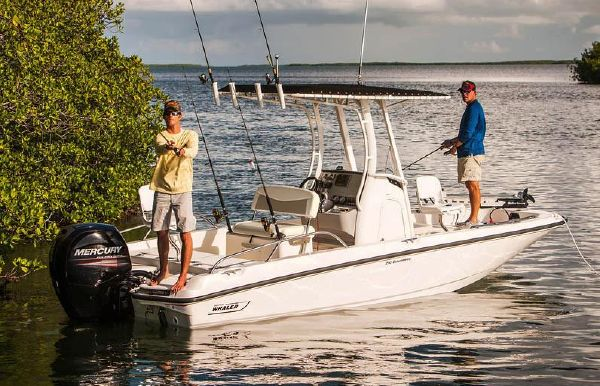 2018 Boston Whaler 210 Dauntless