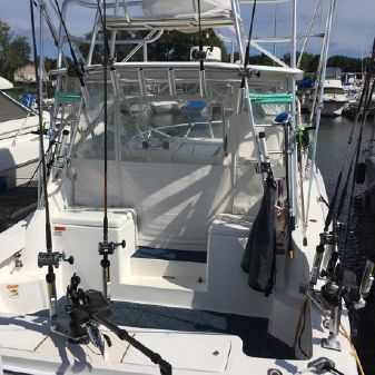 Luhrs 28 Open image