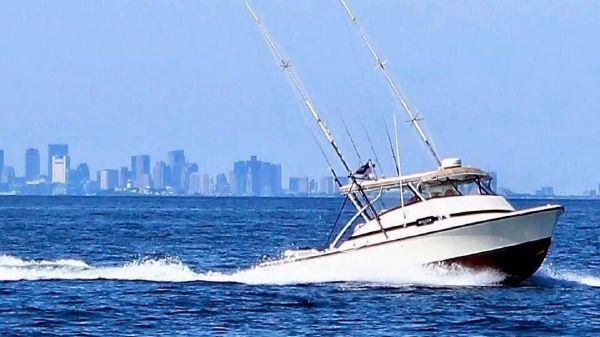 Bertram Bahia Mar