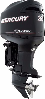 Mercury OptiMax 250 hp - main image