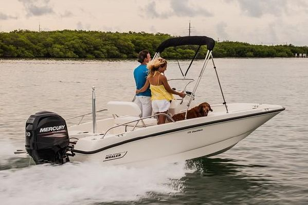 Boston Whaler 170 Dauntless - main image