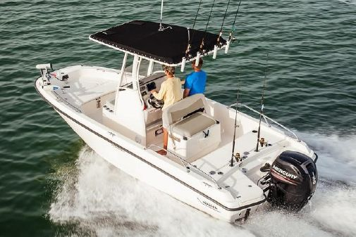 Boston Whaler 210 Dauntless image