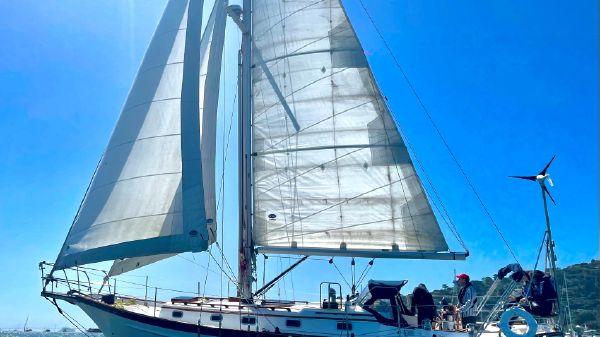 Cabo Rico 38