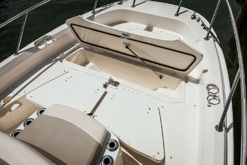 Boston Whaler 210 Dauntless image