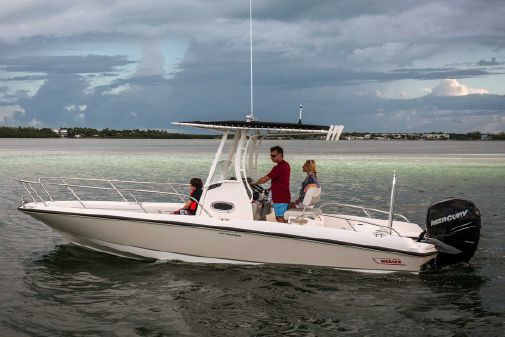 Boston Whaler 240 Dauntless image