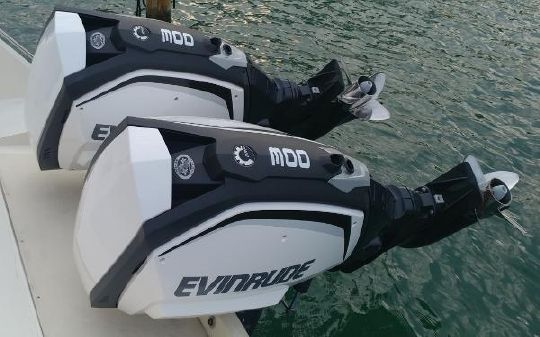 Evinrude H300XUAH image