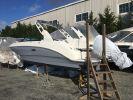 Sea Ray SDX 250 Outboardimage