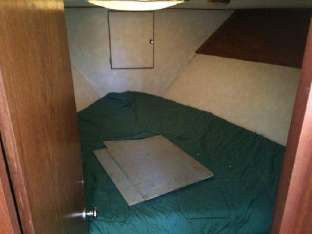 Trojan 36 Tri Cabin image