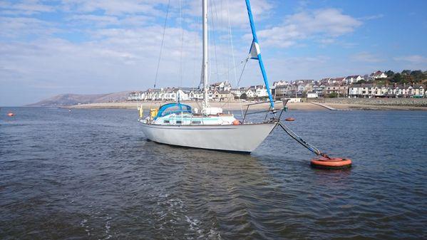 Holman Northney 34 image