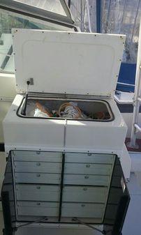 Topaz Express Sport Fisherman image