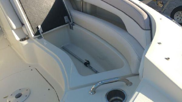 Sea Ray 260 Sundeck image