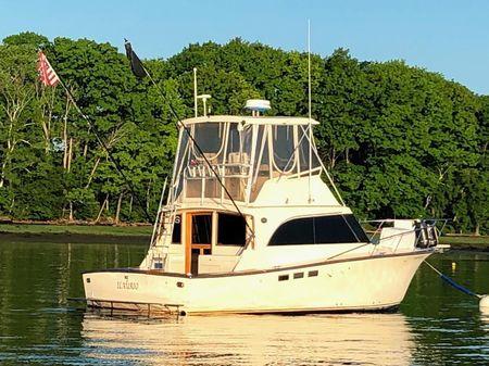Pace Sportfish image