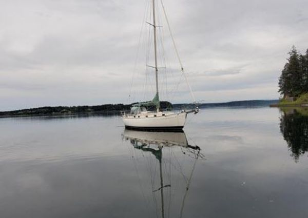Huntingford True North 34 Cutter image