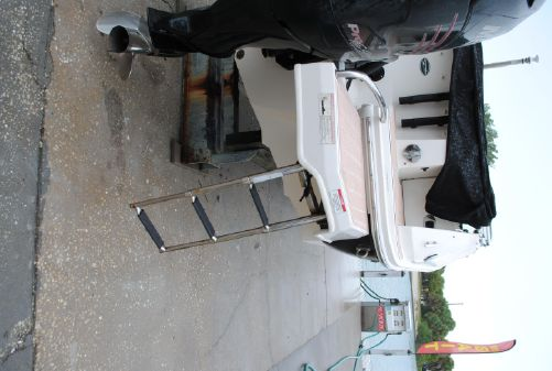 Sea Ray 220 Sundeck Outboard image