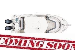 Robalo R242 Explorer