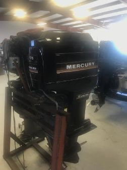 Mercury 175ELPT image