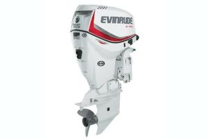 2019 Evinrude E-tec 115 Pontoon Series