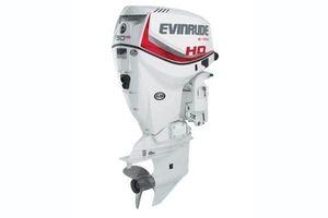 2018 Evinrude E-Tec 90 H.O.