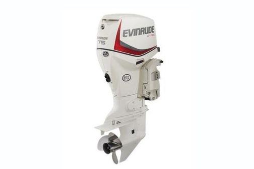 Evinrude E-tec 75 image