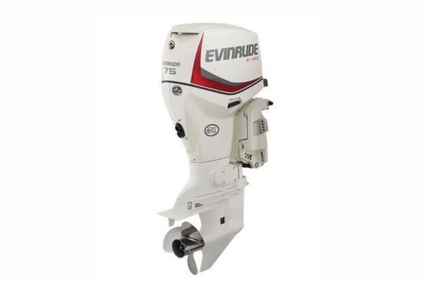 Evinrude E-tec 75 - main image