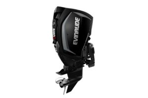 2020 Evinrude E-Tec G2 250 H.O.