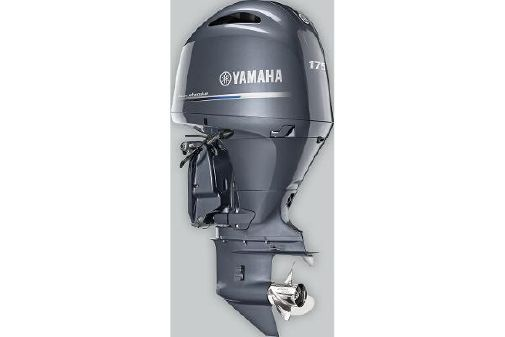 Yamaha Outboards F175 In-Line 4 image