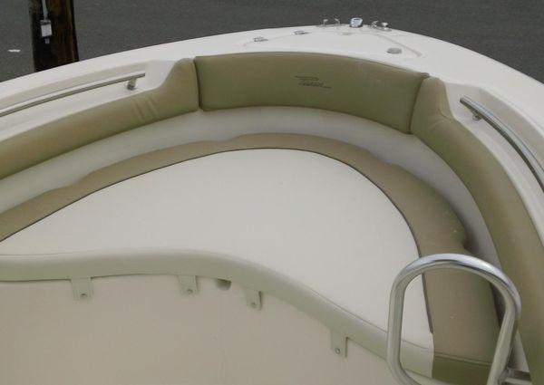 Pioneer 202 Islander image