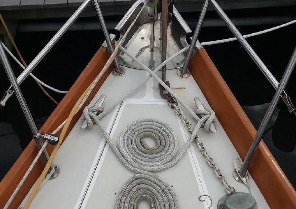 Bristol 33 image