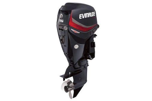 Evinrude E-tec 115 Pontoon Series image