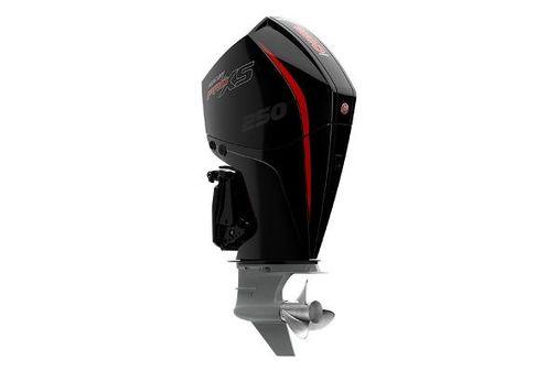 Mercury Pro XS 250 image