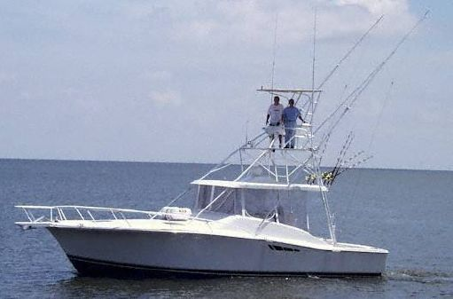 Luhrs Open Fish image