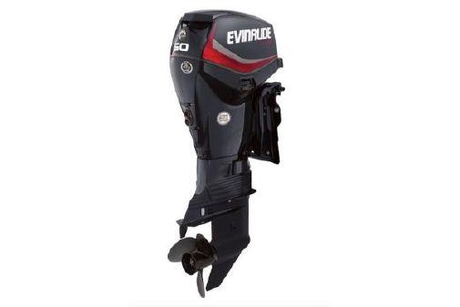 Evinrude E-tec 50 image