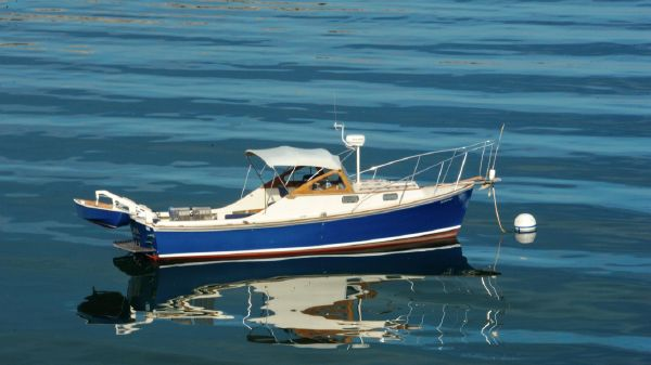 Dyer 29 Softtop Cruiser