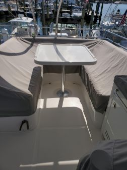 Sea Ray 510 Fly image