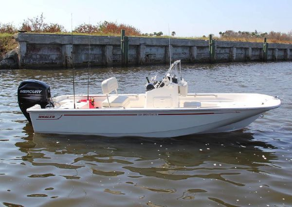 Boston Whaler 150 Montauk image
