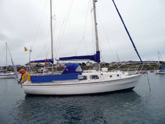 Westerly Renown - main image