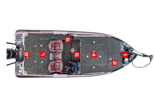 Bass Cat Caracal image