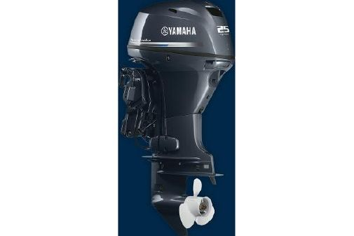 Yamaha Outboards High Thrust 25 image