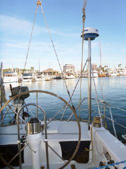 Santa Cruz 50 image