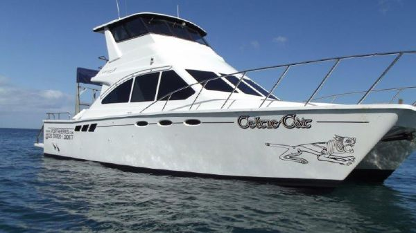 Custom 40ft Power Catamaran