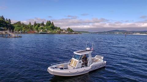 Life Proof Yachtline 23 Diesel