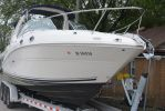 Sea Ray 260 Sundancerimage