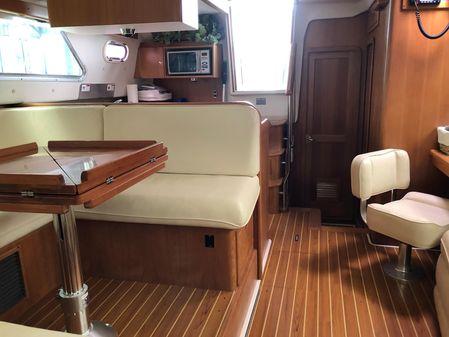 Catalina Morgan 440 image