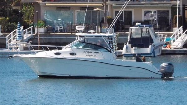 Seaswirl Striper 2901 Walkaround O/B