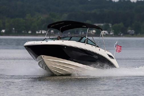 Sea Ray SDX 250 image