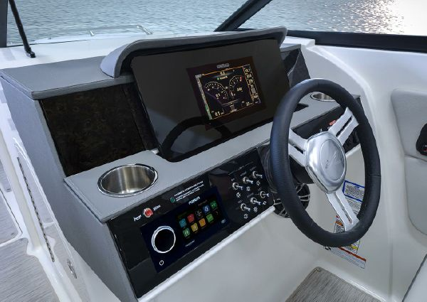 Sea Ray SDX 290 image