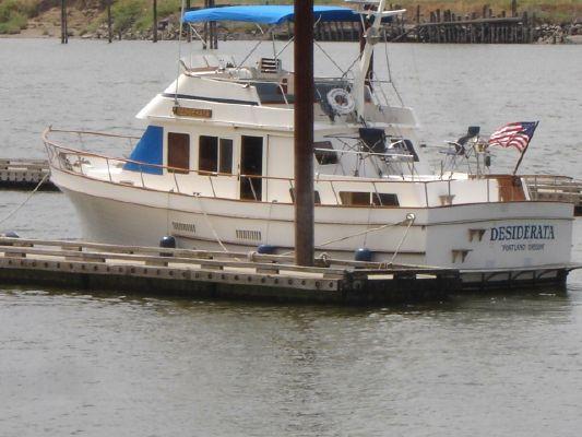 Ocean Alexander 38 Double Cabin - main image
