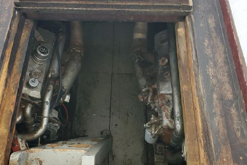 Eastbay Fish image