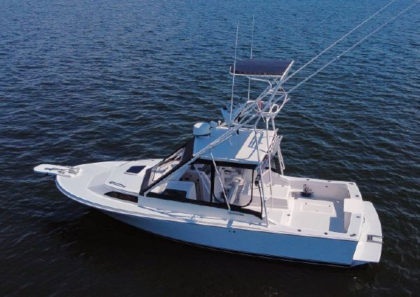 Blackfin 29 Custom Combi image