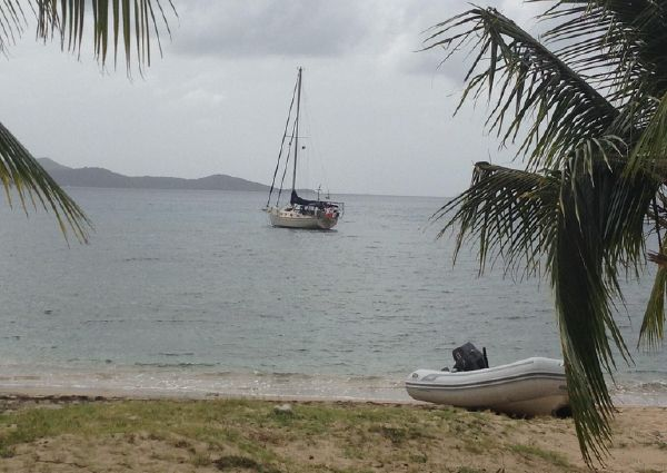 Island Packet 40 image